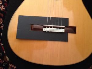 Gitarre-Steg-Schutz